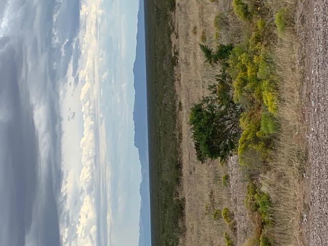 20 Acres of Desert beauty