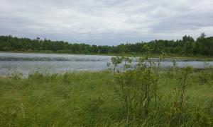 LOT 1 ELBOW LAKE ROAD, ELBOW LAKE, MN 56589