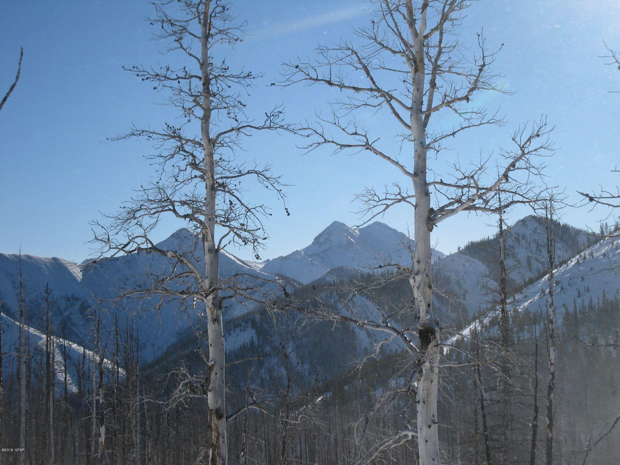 NHN Teton Canyon Choteau, MT - 18-168