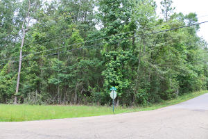 LOT 80 Lake Serene, Hattiesburg, MS 39402