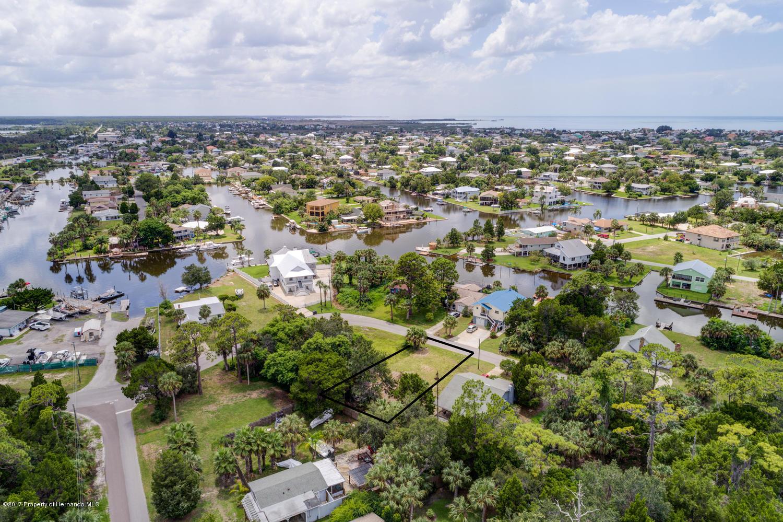 Pine Dale Ct Hernando Beach FL-large-007