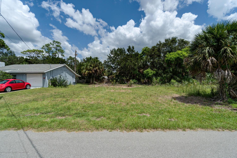 Pine Dale Ct Hernando Beach FL-large-014