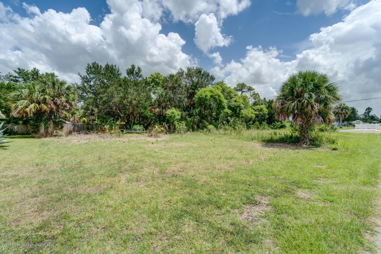 Pine Dale Ct Hernando Beach FL-large-015