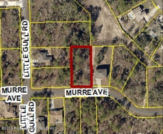 0 Murre Avenue
