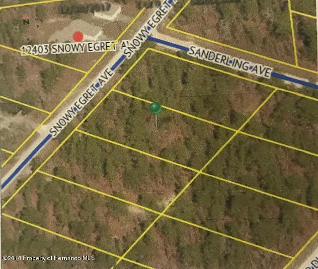 0 Snowy Egret Avenue, Brooksville, Florida 34614, ,Vacant land,For Sale,Snowy Egret,2197432