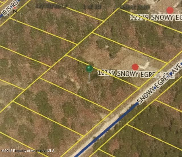 0 Snowy Egret Avenue, Brooksville, Florida 34614, ,Vacant land,For Sale,Snowy Egret,2197433