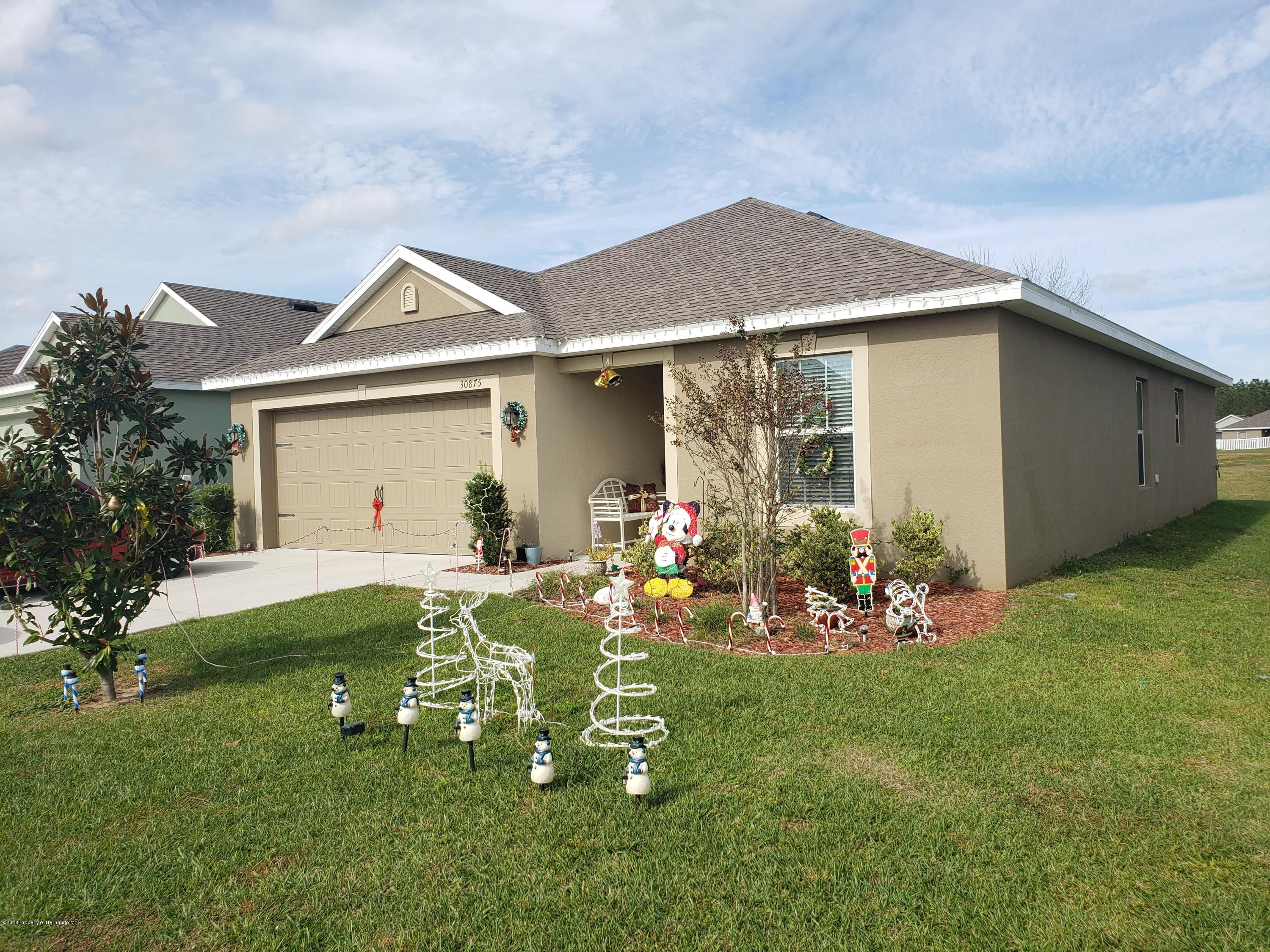 30875 Water Lily Drive, Brooksville, Florida 34602, 3 Bedrooms Bedrooms, ,2 BathroomsBathrooms,Residential,For Sale,Water Lily,2197392
