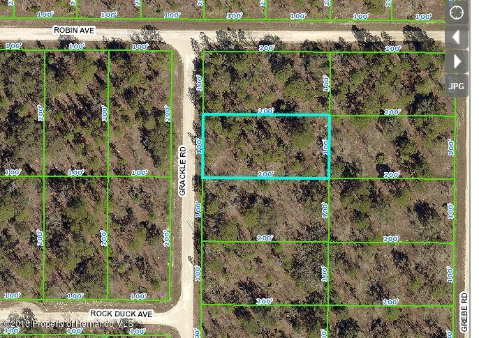 0 Grackle Road, Brooksville, Florida 34614, ,Vacant land,For Sale,Grackle,2197412