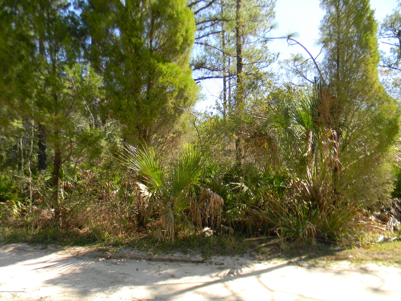 253 N Vesper Point, Crystal River, Florida 34429, ,Vacant land,For Sale,N Vesper,2198807