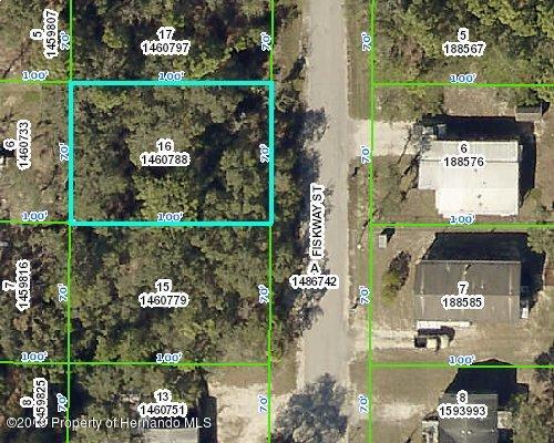 00 Fiskway, Spring Hill, Florida 34606, ,Vacant land,For Sale,Fiskway,2199038
