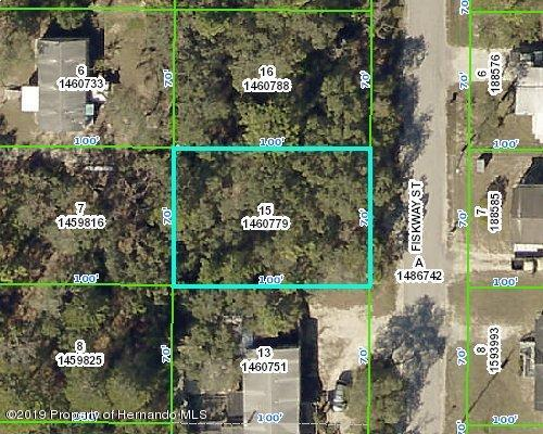 0 Fiskway Street, Spring Hill, Florida 34606, ,Vacant land,For Sale,Fiskway,2199039
