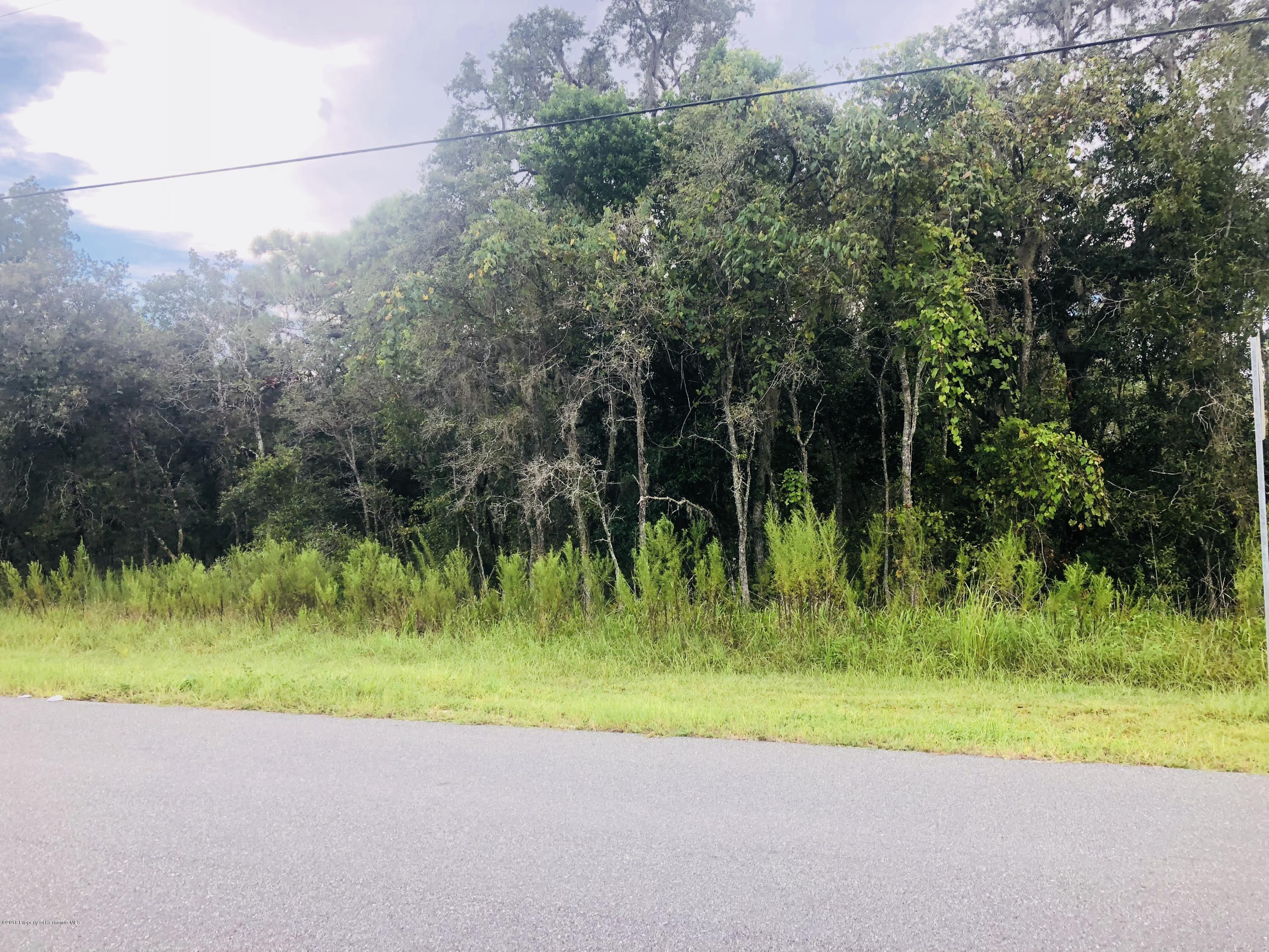 11189 Horned Owl Road, Weeki Wachee, Florida 34614, ,Vacant land,For Sale,Horned Owl,2199579