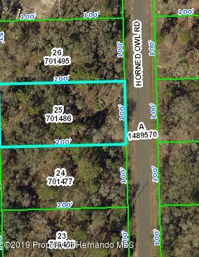 0 Horned Owl, Weeki Wachee, Florida 34614, ,Vacant land,For Sale,Horned Owl,2199583