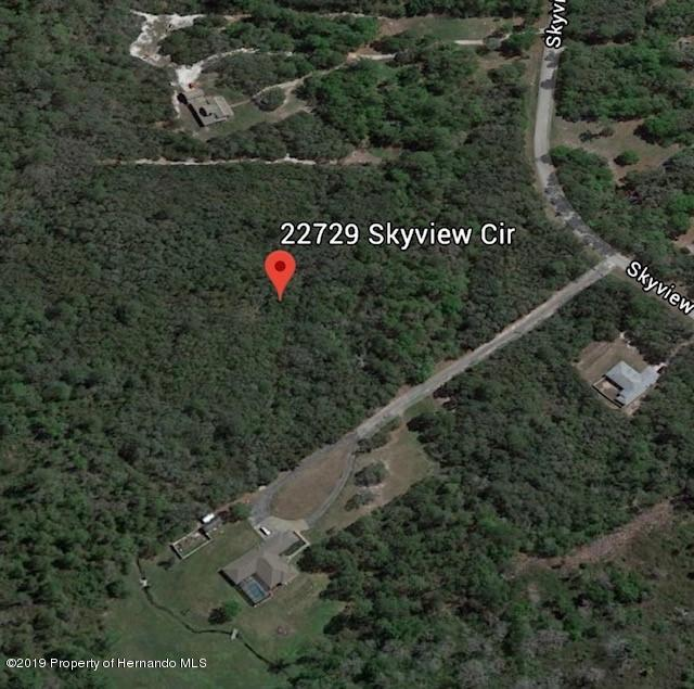22729 Skyview Circle, Brooksville, Florida 34602, ,Vacant land,For Sale,Skyview,2200435