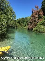 Weeki Wachee River - 2