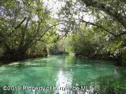 Weeki Wachee River - 5