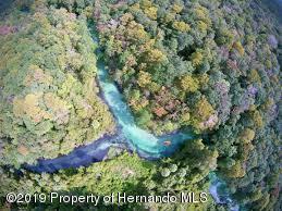 Weeki Wachee River - 7
