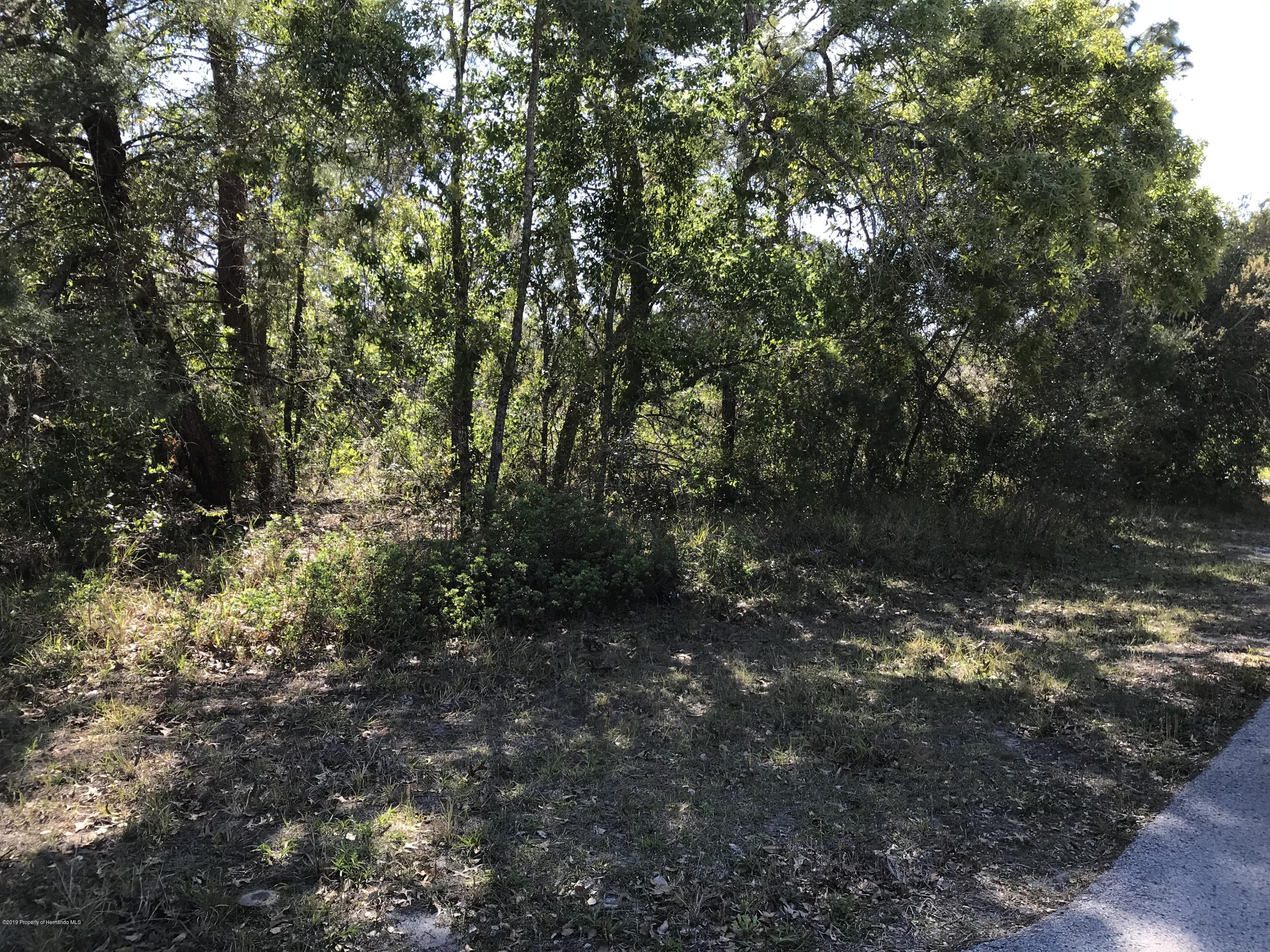 4327 Duval Street, Spring Hill, Florida 34606, ,Vacant land,For Sale,Duval,2200563