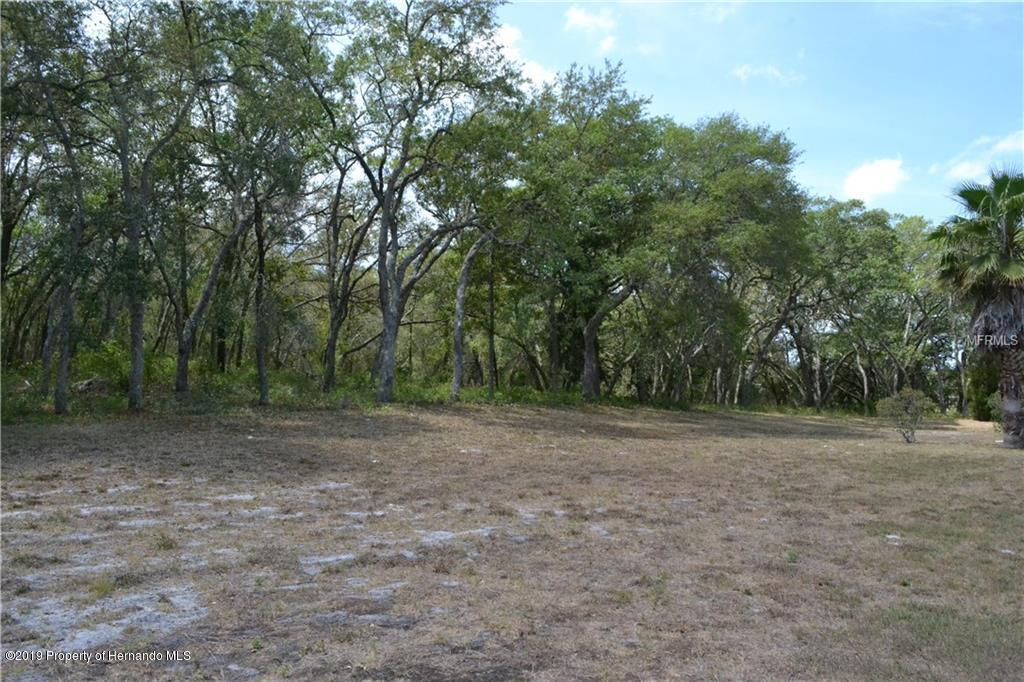 12947 Brutus Drive, Hudson, Florida 34667, ,Vacant land,For Sale,Brutus,2200564