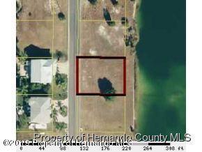 3324 Scarlet Sage Drive, Hernando Beach, Florida 34607, ,Vacant land,For Sale,Scarlet Sage,2200548