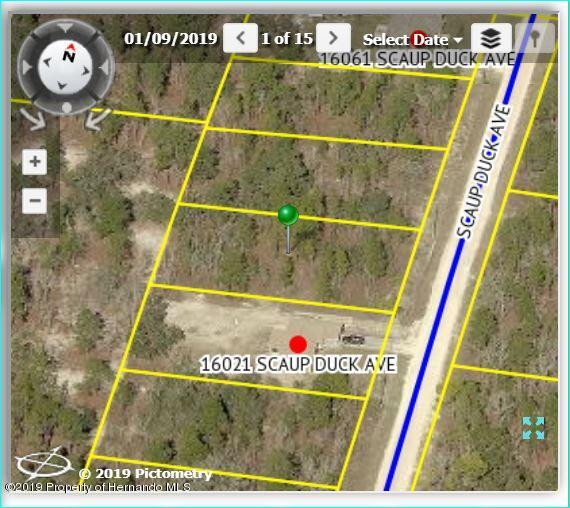 16031 SCAUP DUCK Avenue, Brooksville, Florida 34614, ,Vacant land,For Sale,SCAUP DUCK,2200557