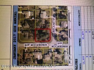 0 Ireland Street, Spring Hill, Florida 34608, ,Vacant land,For Sale,Ireland,2200584