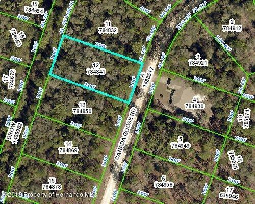 0 Canada Goose Road, Weeki Wachee, Florida 34614, ,Vacant land,For Sale,Canada Goose,2201841