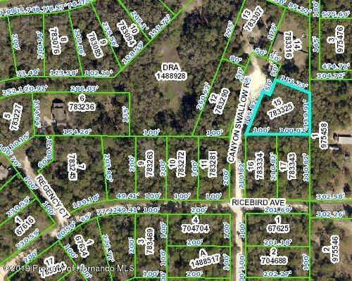0 Canyon Swallow Road, Weeki Wachee, Florida 34614, ,Vacant land,For Sale,Canyon Swallow,2201842