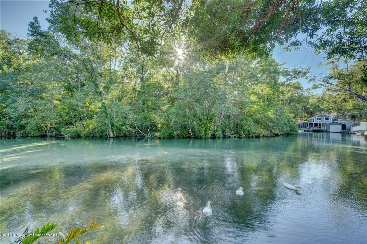 Kayak down the River