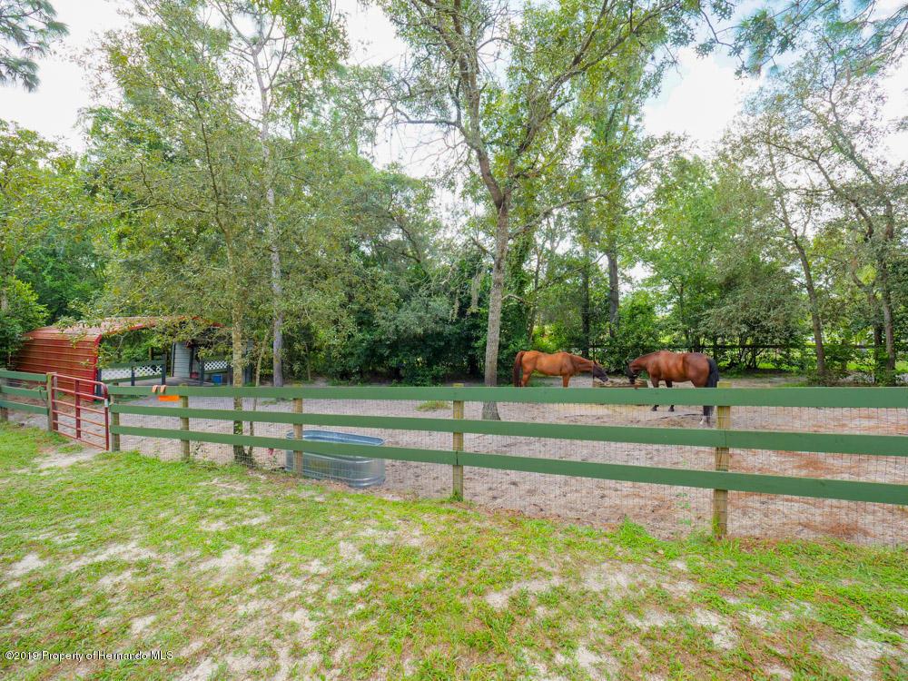 18816 Drayton Street, Spring Hill(Pasco), Florida 34610, 3 Bedrooms Bedrooms, ,2 BathroomsBathrooms,Residential,For Sale,Drayton,2203165