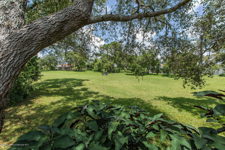 11005 Audie Brook Drive, Spring Hill, Florida 34608, 3 Bedrooms Bedrooms, ,2 BathroomsBathrooms,Residential,For Sale,Audie Brook,2203169
