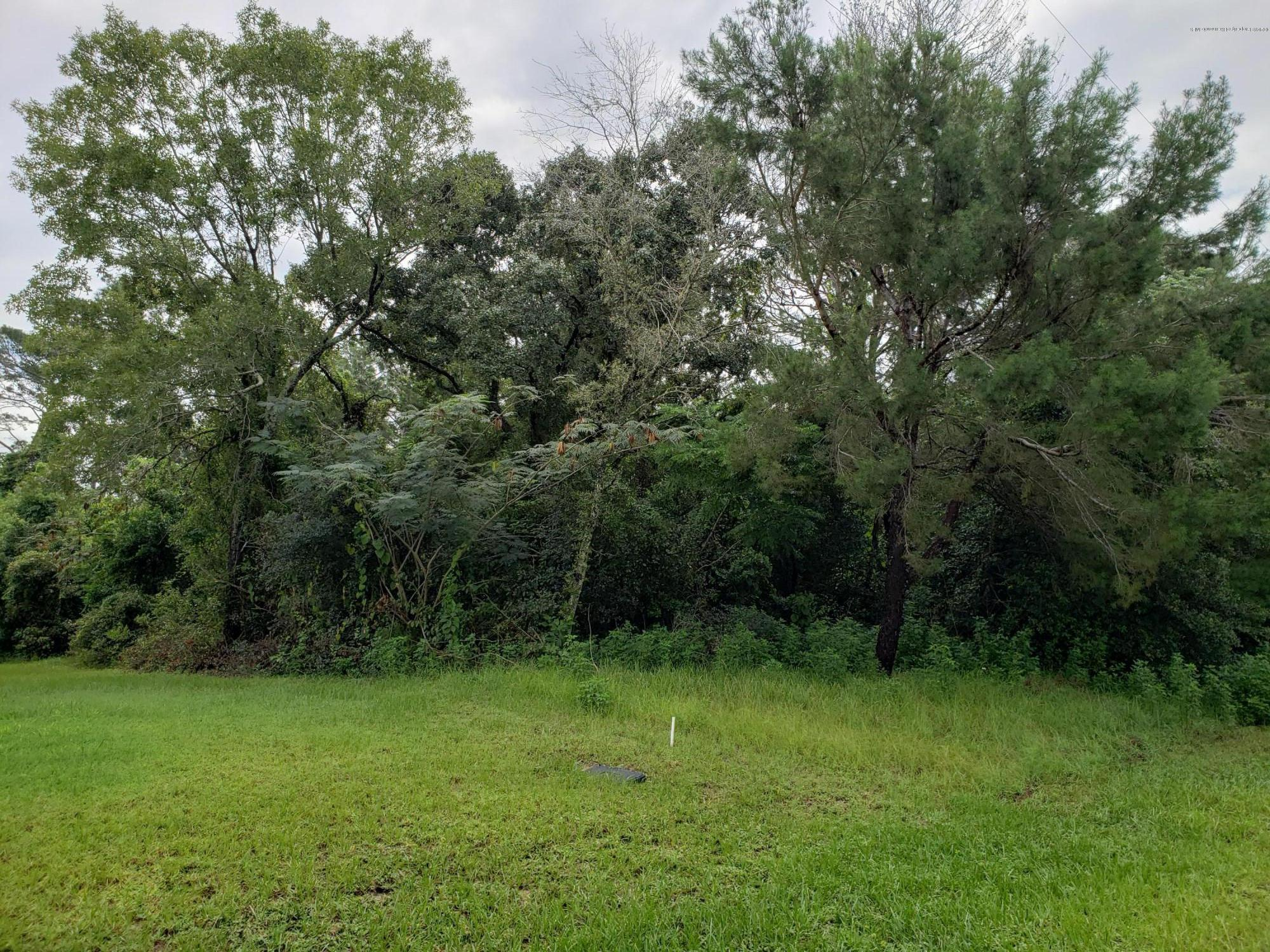 00 Lema Drive, Spring Hill, Florida 34609, ,Vacant land,For Sale,Lema,2203254