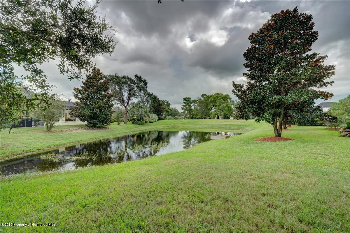 Image For 8725 Mississippi Run   , Weeki Wachee, FL 34613