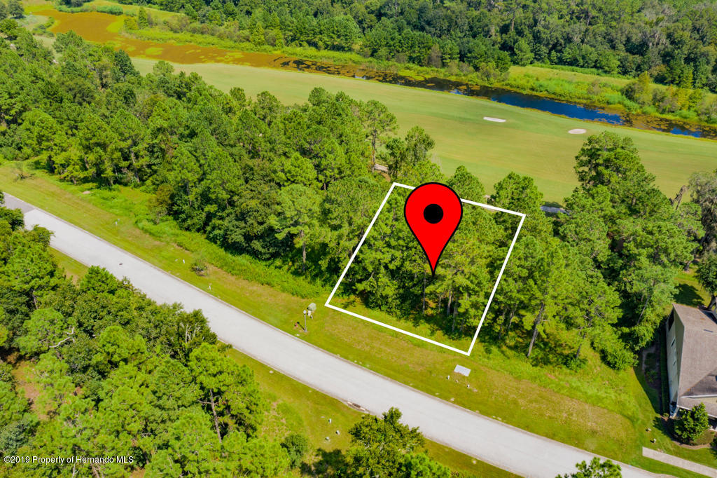 0 Southern Valley Loop, Brooksville, Florida 34601, ,Vacant land,For Sale,Southern Valley,2203797