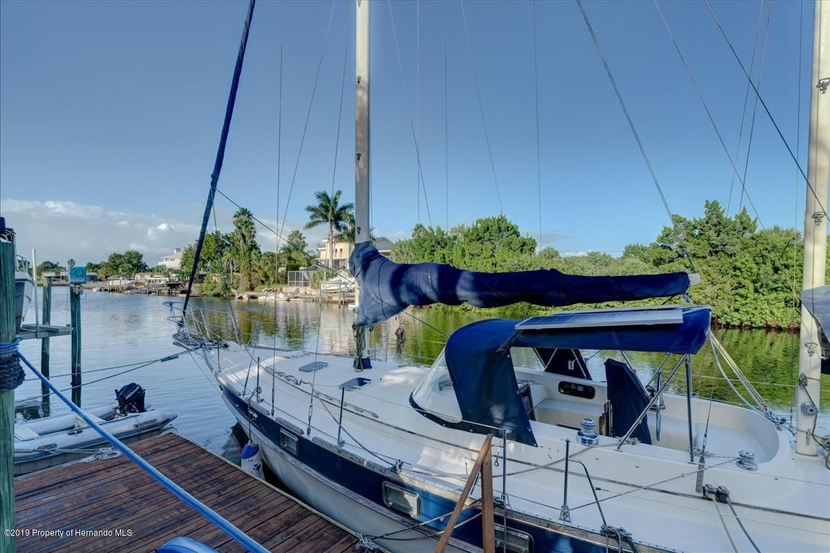 50-Dock