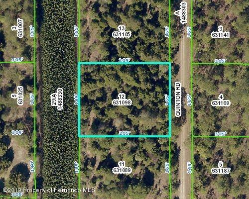 000 Quinton Road, Weeki Wachee, Florida 34614, ,Vacant land,For Sale,Quinton,2204535