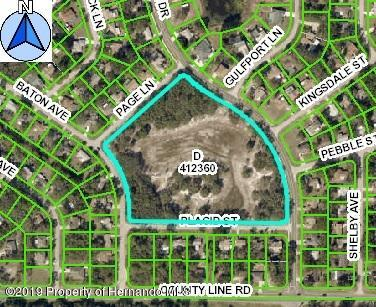 0 Waterfall Drive, Spring Hill, Florida 34606, ,Vacant land,For Sale,Waterfall,2205195