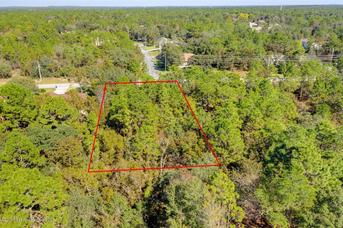 11-Property Aerial