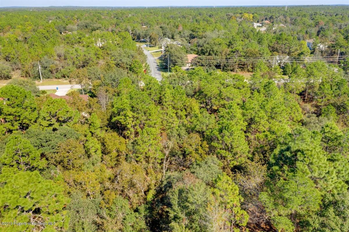 29-Property Aerial