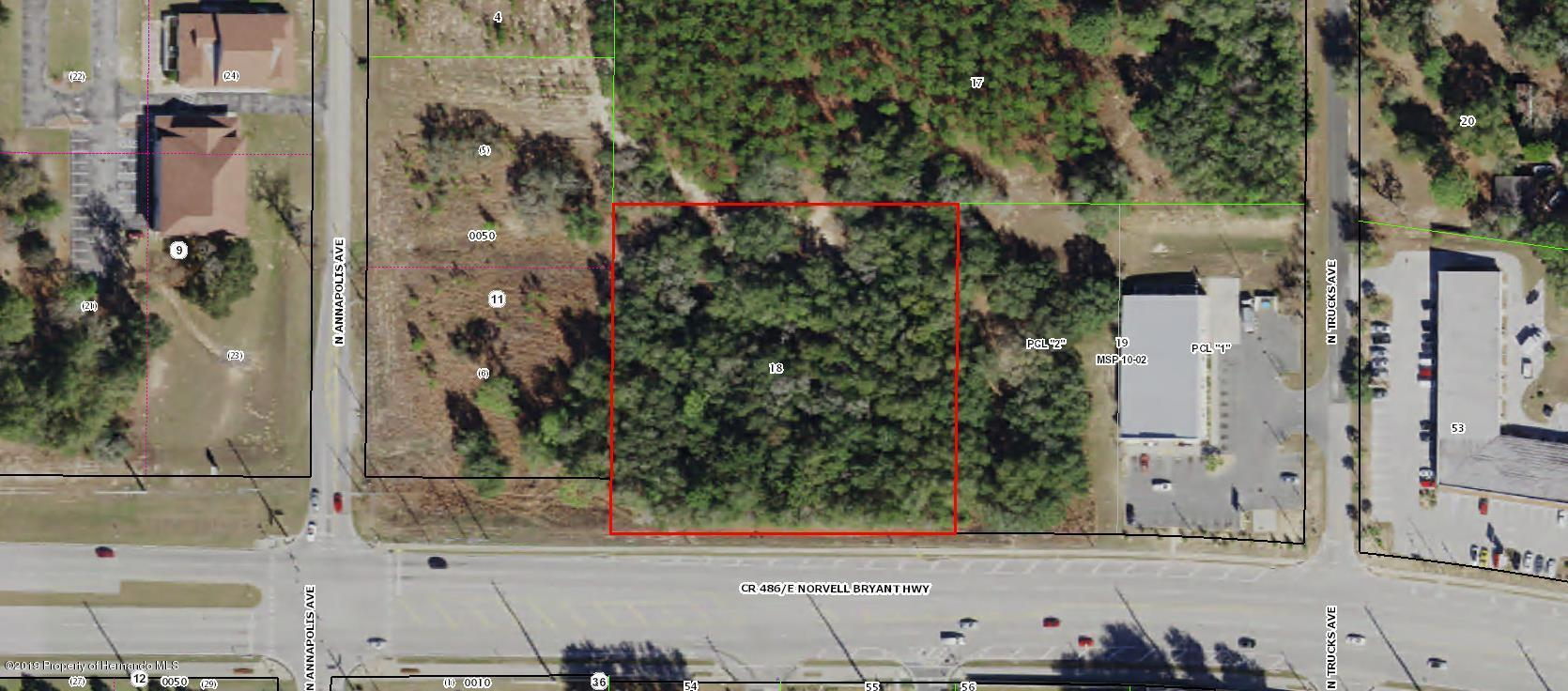 921 Norvell Bryant Highway, Hernando, Florida 34442, ,Comm Vacant Land,For Sale,Norvell Bryant,2206030
