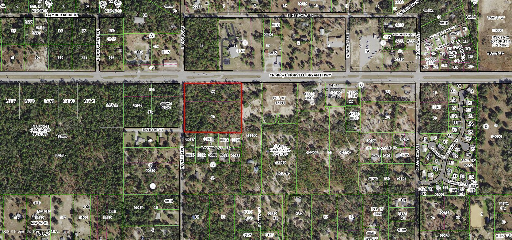 2417 Page & CR486 Avenue, Hernando, Florida 34442, ,Comm Vacant Land,For Sale,Page & CR486,2206029
