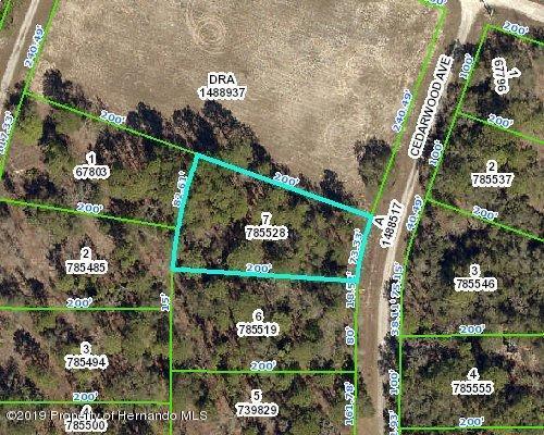 0 Cedarwood Avenue, Weeki Wachee, Florida 34614, ,Vacant land,For Sale,Cedarwood,2206039