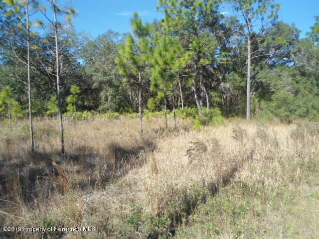 13111 Mottled Duck Road, Weeki Wachee, Florida 34614, ,Vacant land,For Sale,Mottled Duck,2206044
