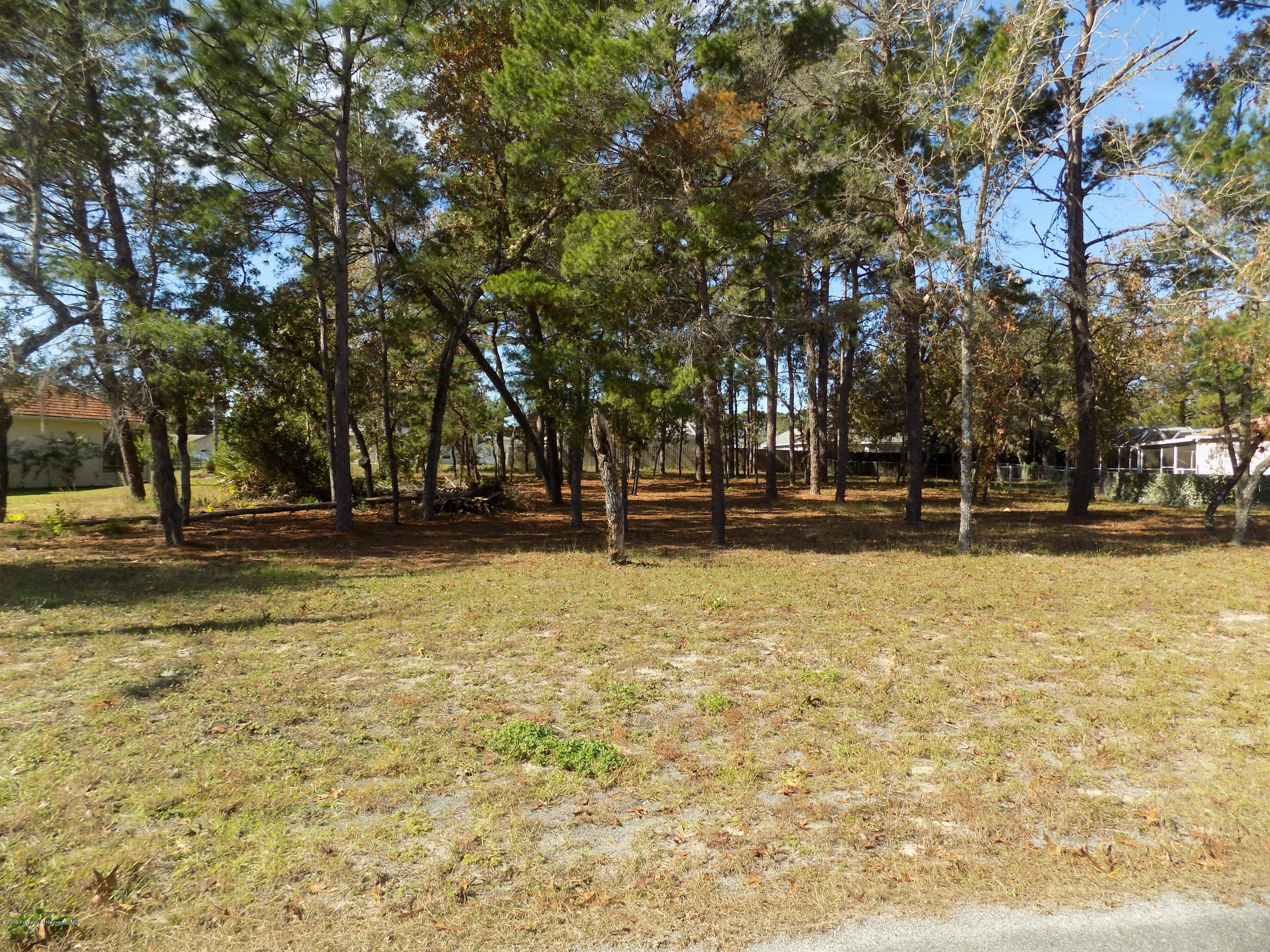 4132 Elwood Road, Spring Hill, Florida 34609, ,Vacant land,For Sale,Elwood,2206058