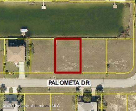 0 Palometa Drive, Hernando Beach, Florida 34607, ,Vacant land,For Sale,Palometa,2206069