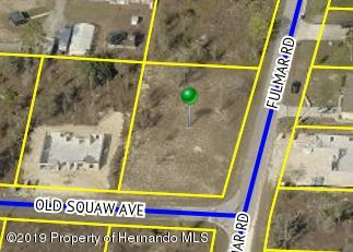 0 Fulmar Road, Weeki Wachee, Florida 34614, ,Vacant land,For Sale,Fulmar,2206077