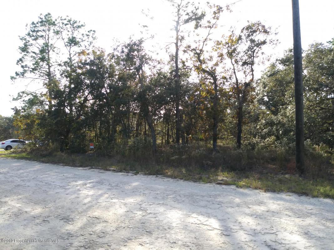 0 Duck Hawk Road, Weeki Wachee, Florida 34614, ,Vacant land,For Sale,Duck Hawk,2206083