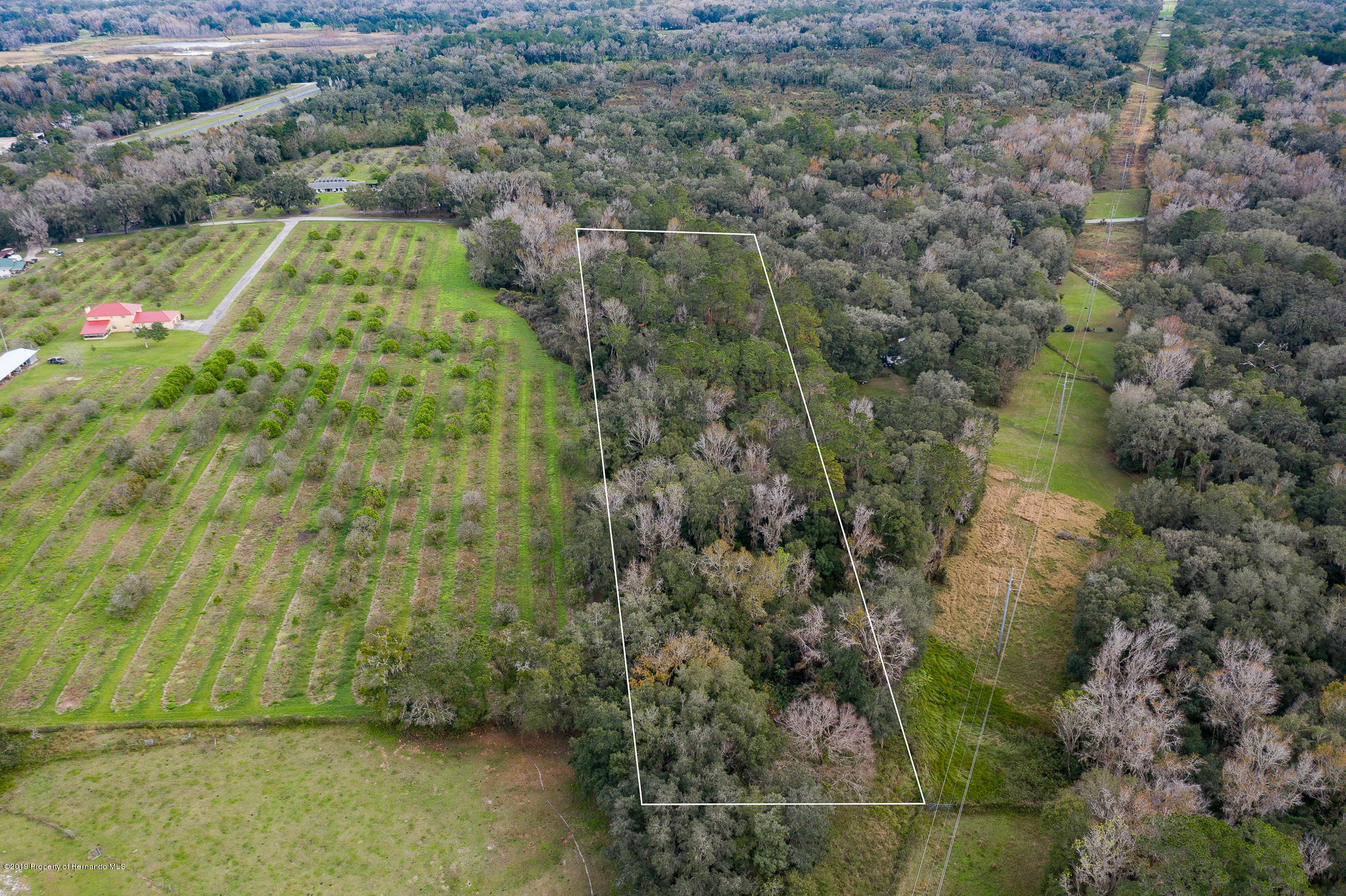 0 Griffin Road, Brooksville, Florida 34601, ,Vacant land,For Sale,Griffin,2206104