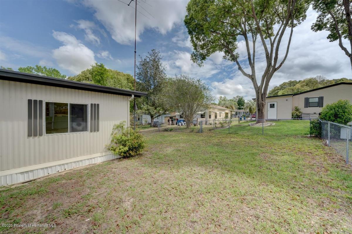 42-Backyard