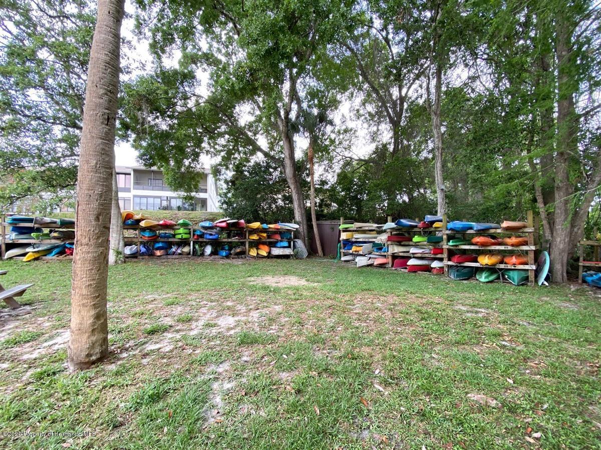 Or...Kayak